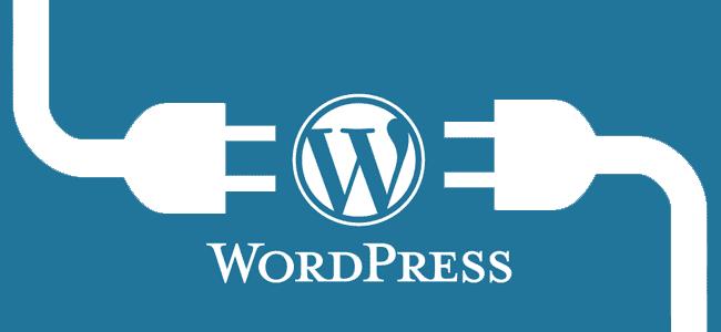 WordPress x.x.x hazır! Lütfen site yöneticisine haber verin.